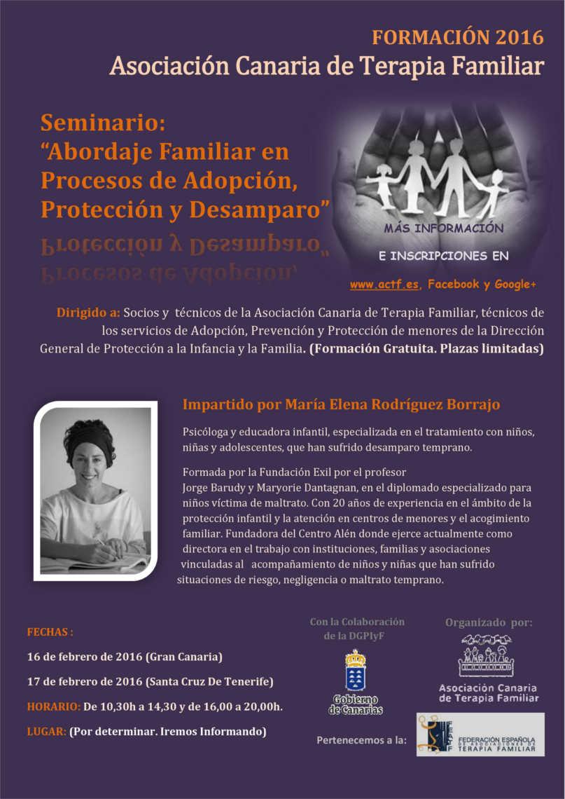 seminario-adopciones-actf